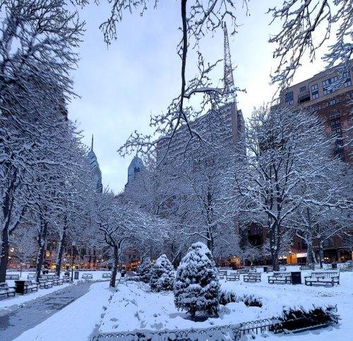 Feb 4, 2009 Snow morning in Rittenhouse Park