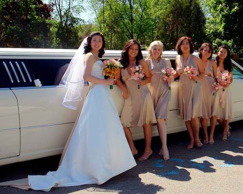 Bride-in-front-of-the-Limo-0963-upload