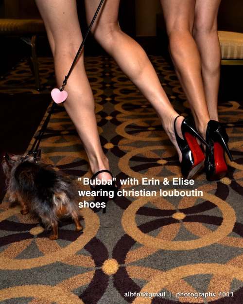 'Bubba'-with-Erin-&-Elise's-shoes-upload-6679