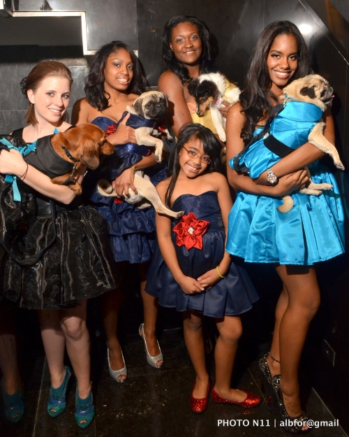 Nov 18, 2011 PSPCA Fashion Show | Virginia Milmine, Jessica Arroyo, Imani HcCoy, Kandy Santana & Elizabeth Arroyo