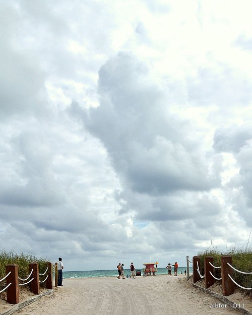 Dec 10, 2011 Beach-DSC_3570