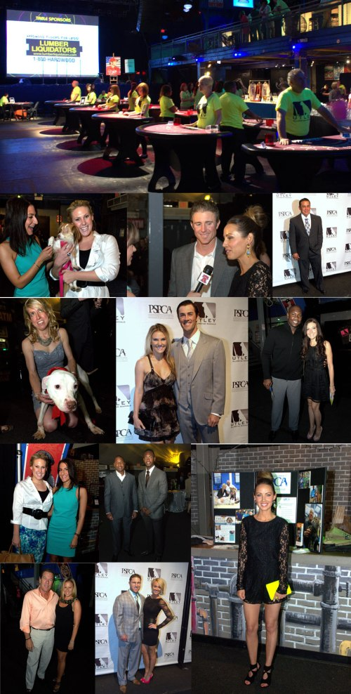May-15,-2013--6th-Annual-Utley-All-Star-Animals-Casino-Night-2013---Master-Board-2-upload