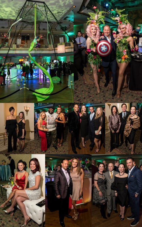 Apr-7,-2017-15th-ANNUAL-Donors-THE-Party-2017_Board-#2