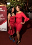 Apr 1, 2017 The Red Cross Red Ball Gala 2017